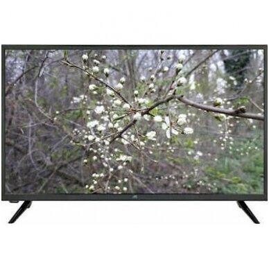 CHIQ U50G5S 50'' televizorius